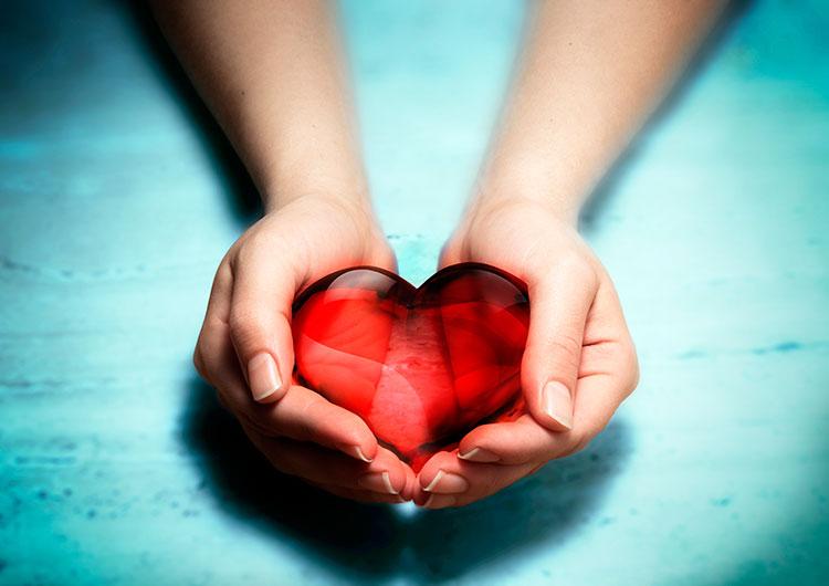 картинки сердце в руках у девушки